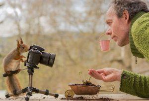 Фотограф снимает белок на своём заднем дворе и этим зарабатывает себе на жизнь