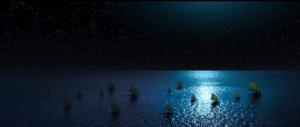 Видео: Самые красивые моменты из мультфильмов Диснея с 1937 по 2016 год.