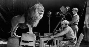Жизнь львов с заставки MGM