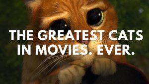 Видео: Самые крутые котэ в фильмах