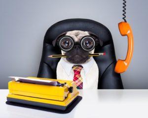Тест: На какой необычной должности вы могли бы работать?