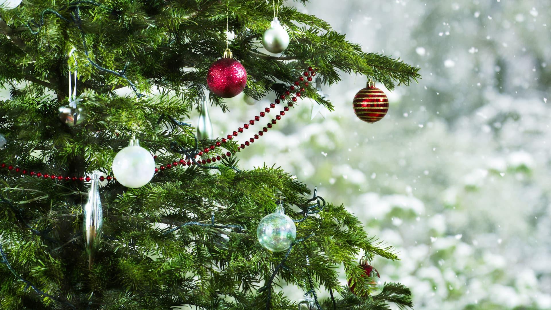 Тест: Какую ёлку вам выбрать к Новому году?