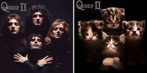 Художник переделывает популярные альбомы, заменяя музыкантов кошками, и результат выглядит милее, чем оригинал.