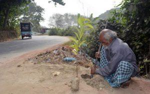 Даже в одиночку можно изменить мир: 17,5 тысяч деревьев посадил многодетный отец