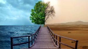 Тест по климатическим изменениям. Разбираемся в глобальном потеплении вместе с Леонардо Ди Каприо.