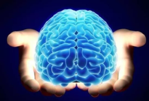 Тест: Проверим ваше логическое мышление?