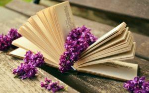 Тест по литературе: Кто написал эти книги?