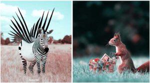 Французский художник создает в Photoshop фантастические изображения животных