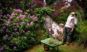 Тест для садоводов и огородников