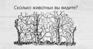 Головоломка-иллюзия