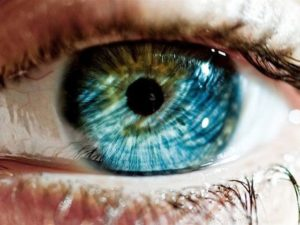 Test: What Color Should Your Eyes Really Be?