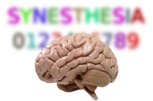 Тест: Являешься ли ты синестетиком?