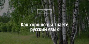 Насколько хорошо вы знаете русский язык? Тест