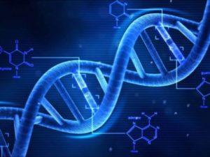 Тест: Что вы знаете о ДНК и генах?