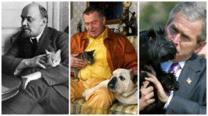 Тест: Ты знаешь домашних питомцев знаменитостей?