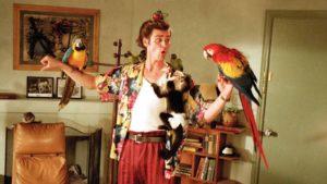 Животный кинотест: Насколько хорошо ты помнишь фильмы с братьями нашими меньшими