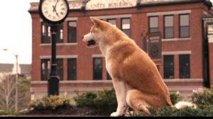 Тест: Угадайте, из каких фильмов эти животные