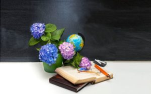Тест ко Дню учителя