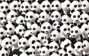 Тест на внимательность: Найди панду!