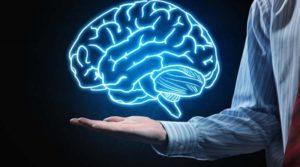 Тест: Как много вы знаете о человеческом мозге?