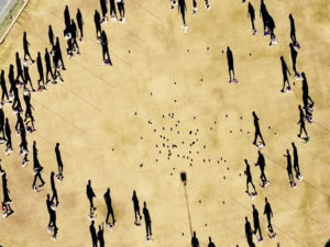 Тест на сообразительность: Вы догадаетесь, как создана иллюзия?