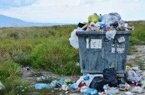 Только 5% людей способны ответить на 10 вопросов про мусор