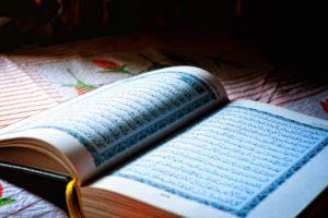 Тест на языковое чутье: Сможете ли вы угадать слова, которые заимствованы из арабского языка?
