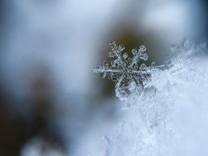 Тест: Всё ли вы знаете о снеге