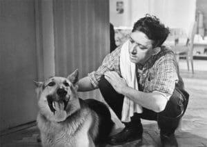 Тест: Угадайте, из какого фильма собака